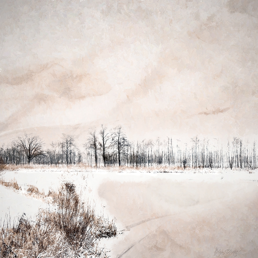 Silence Of Winter No.3