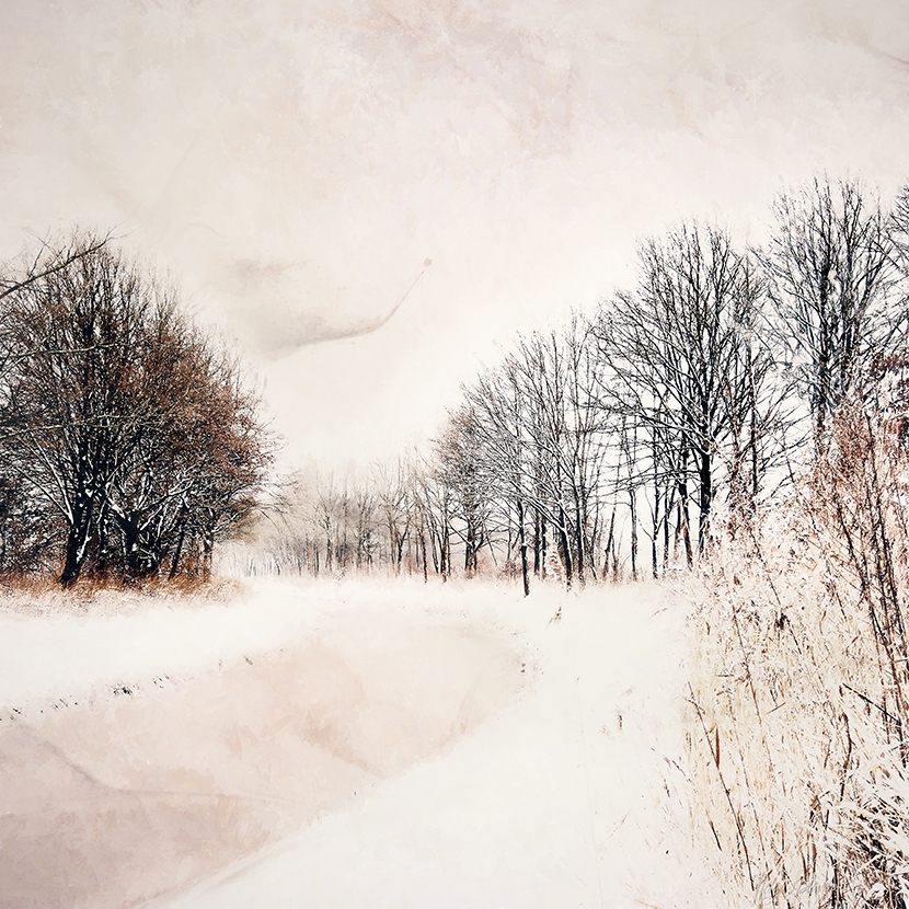 Silence Of Winter No.4